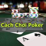 poker việt nam và luật chơi poker cho người mới